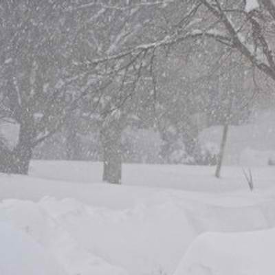 How To Prepare For Blizzard 2015